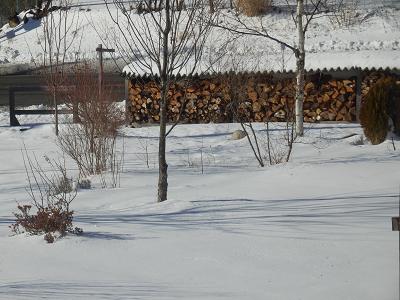 190202雪の庭.png