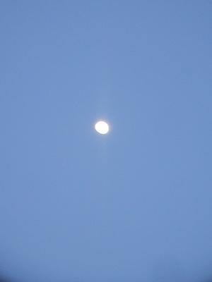 190216夕暮れの月.png